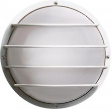 Nuvo SF77-892 - 2 Light Poly Round Cage Wall Flush